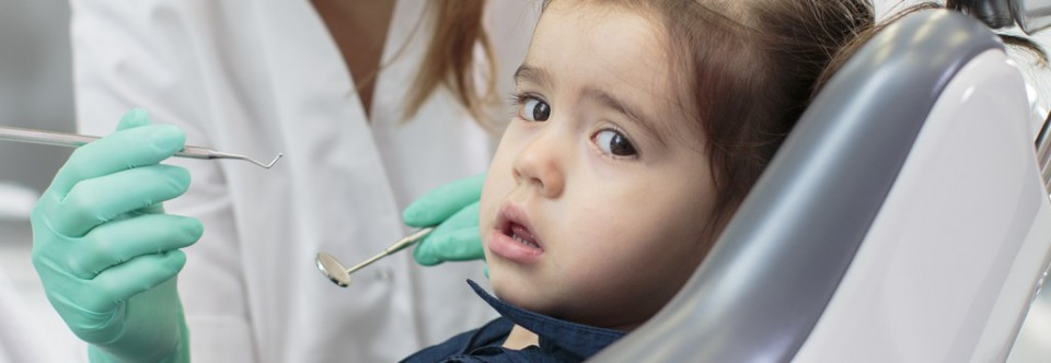 Safedent – rękawice dla stomatologii